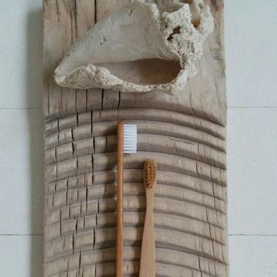 Bambustanbørster