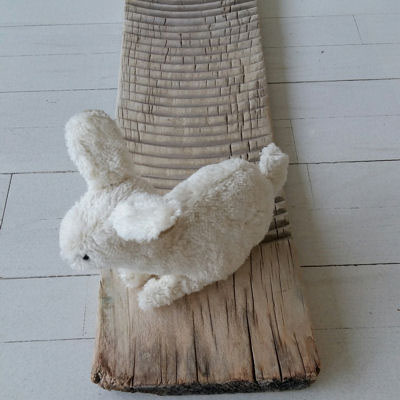 Lille kanin